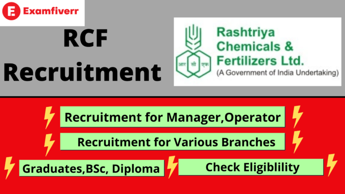 rcf recruitment, Graduates, diploma, Bsc apply