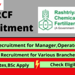 rcf recruitment banner, raduates, bsc apply,